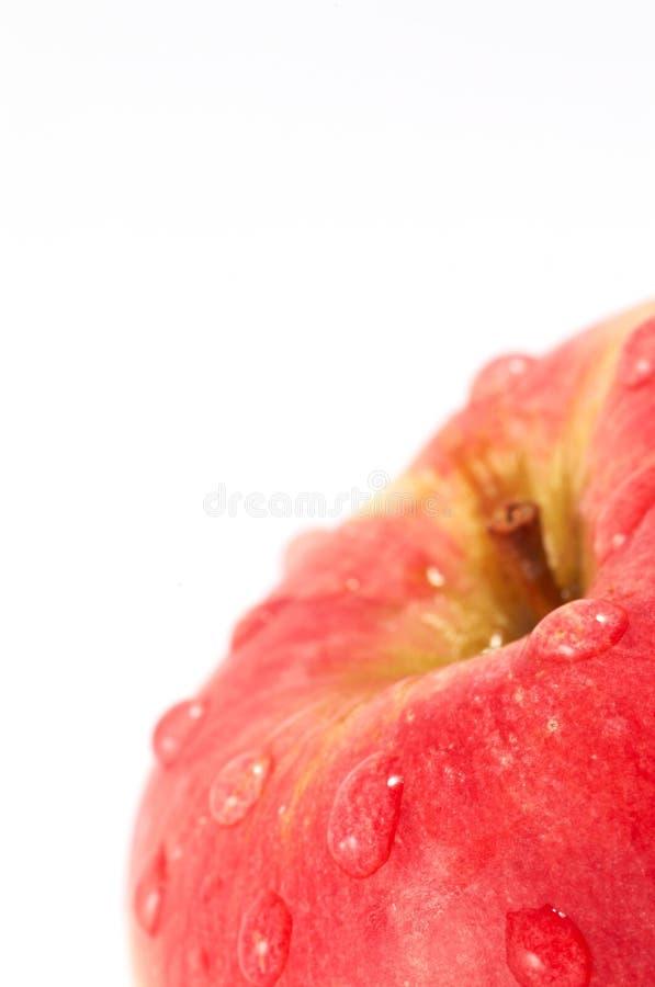 Red apple stock photo