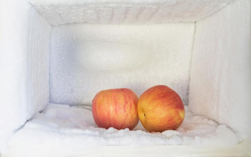 Red apple in freezer of a refrigerator. Ice buildup inside of a royalty free stock photo