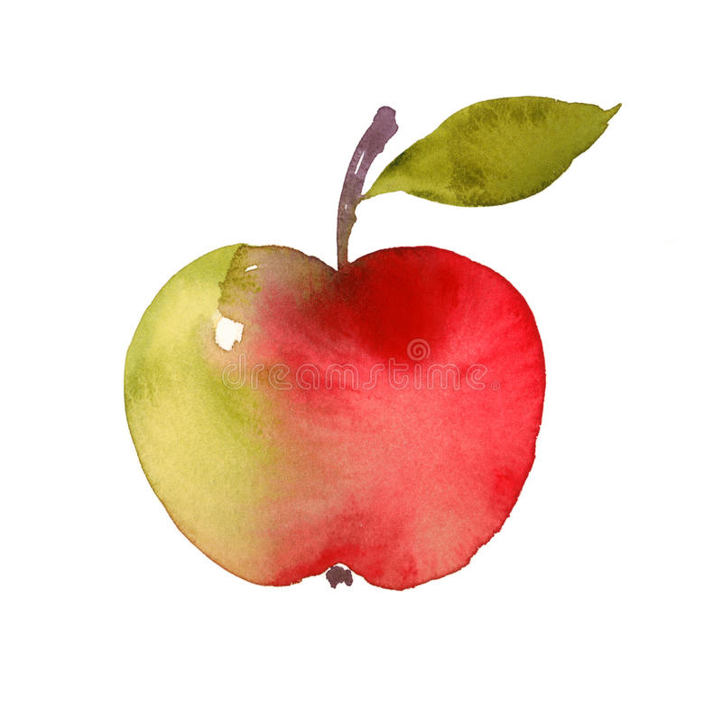 Red Apple Fruit Watercolor Still Life Illustration Hand Painted royalty free illustration