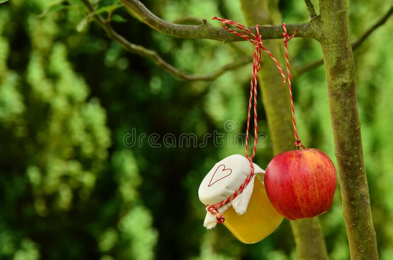 Red Apple Hanging On Tree At Daytime Free Public Domain Cc0 Image
