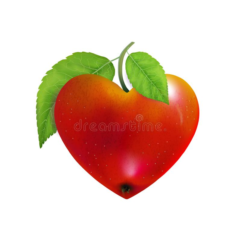 Red apple heart isolated. Modern Valentines love sign. Beautiful fresh fruit. Vector illustration for advertising, packaging, bann. Er, wallpaper. Trendy vector royalty free stock image