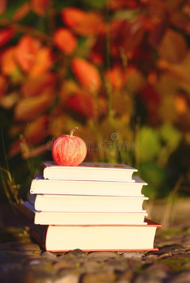 Free Red Apple On Books Royalty Free Stock Photo - 26484805