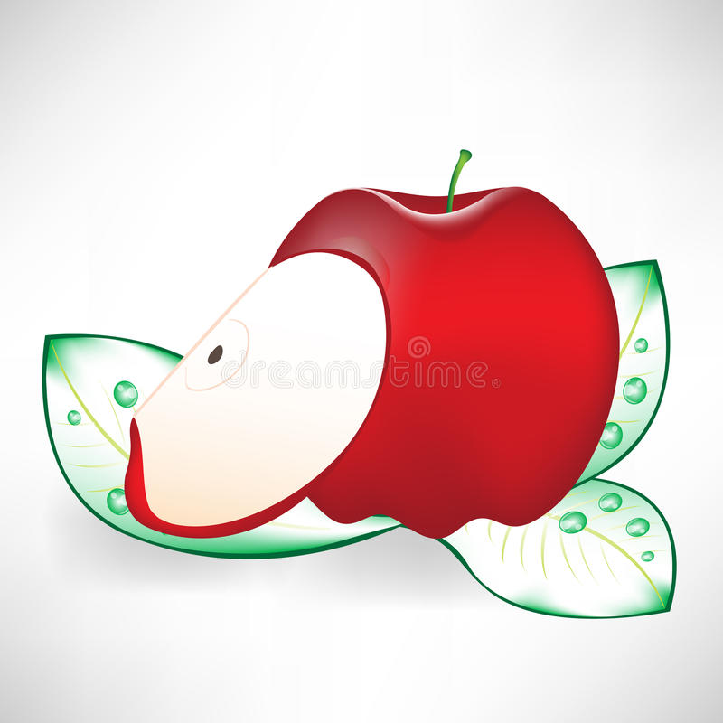 Download Red apple and slice stock vector. Image of ripe, apple - 21542468
