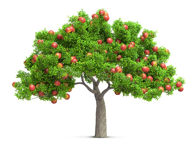 A red apple tree isolated 3D illustration royalty free illustration