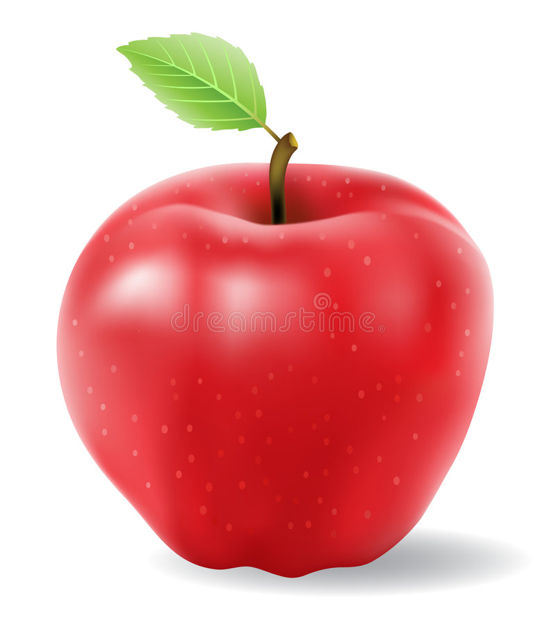 Free Red Apple Vector Royalty Free Stock Images - 7681049