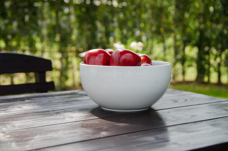 Red apple in white cup royalty free stock images