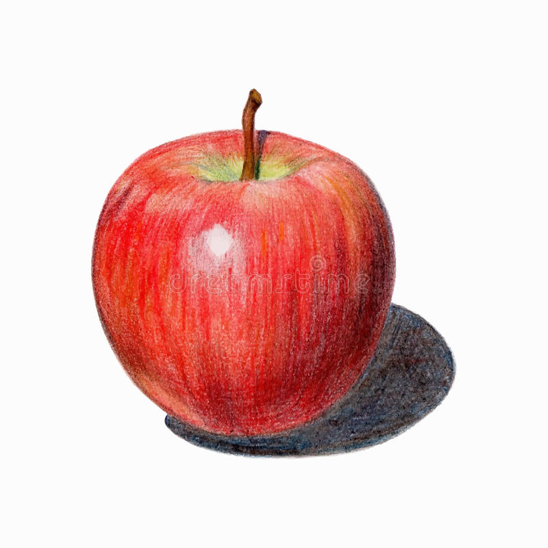 Free Red Apple With Shadow. Isolated Fruit Drawn With Colored Pencils. Stock Photography - 52608432