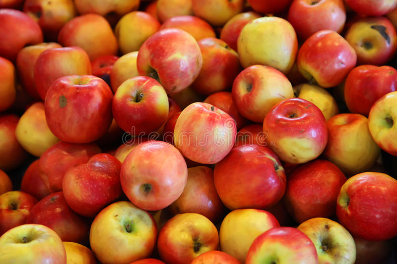 Red Apples. Fresh Fruit As a Whole Background royalty free stock photo
