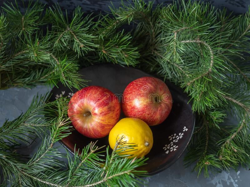Red apples in a black ceramic vase, around the green branches of cedar stock photography