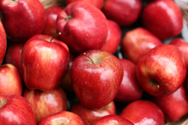 Red Apples. Box of shiny red apples