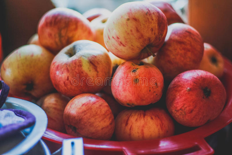 Red apples from the garden , summer still life ,vintage.  stock photography
