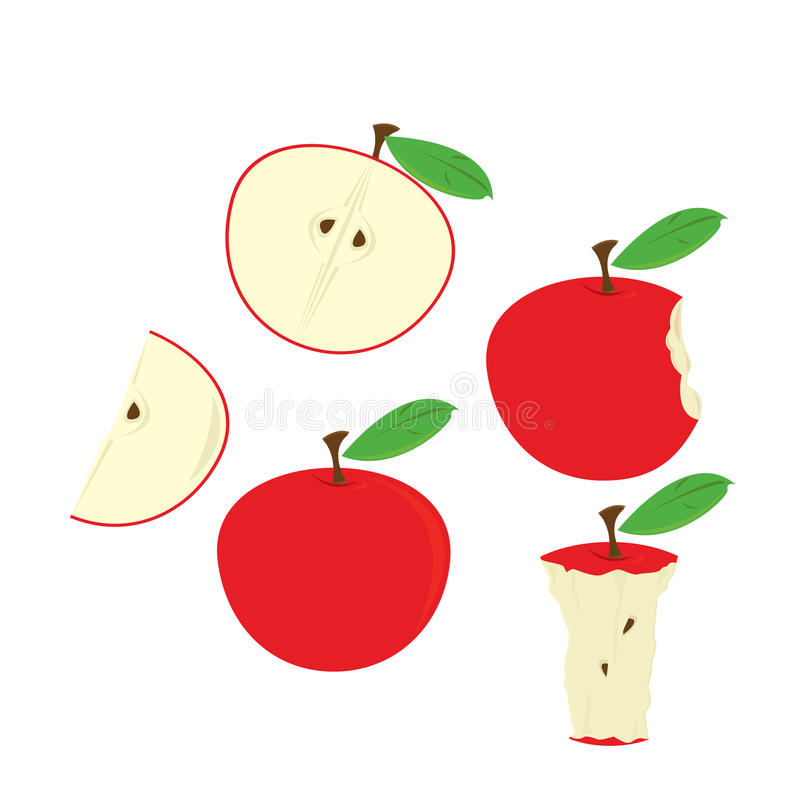Red apples isolated. Red apples in various states isolated on white stock illustration