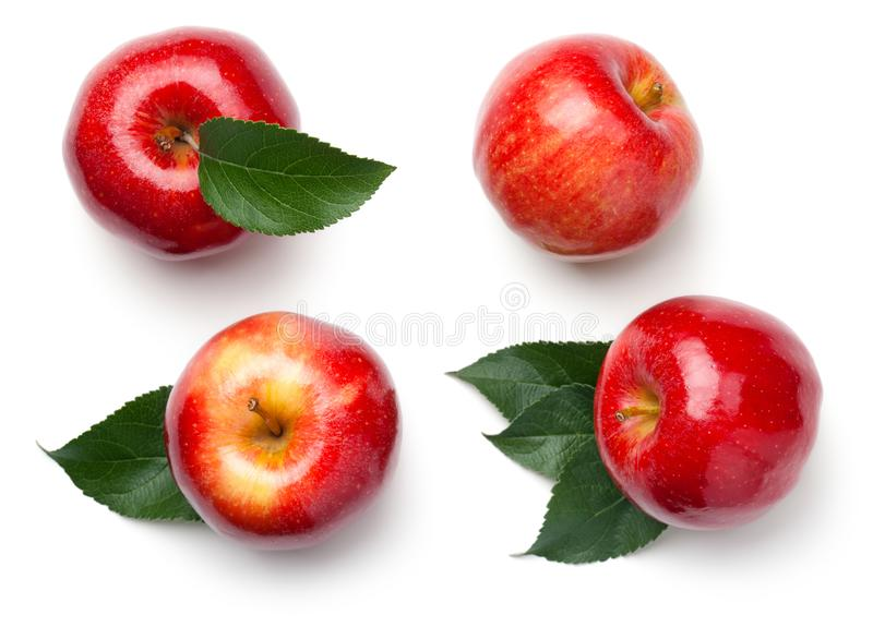 Red Apples Isolated on White Background. Red apples with leaves isolated on white background. Gala apple. Top view stock photos