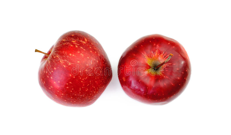 Red apples isolated on white background. Top view stock image