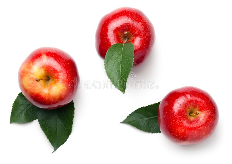 Red Apples Isolated on White Background. Red apples with leaves isolated on white background. Gala apple. Top view royalty free stock photography