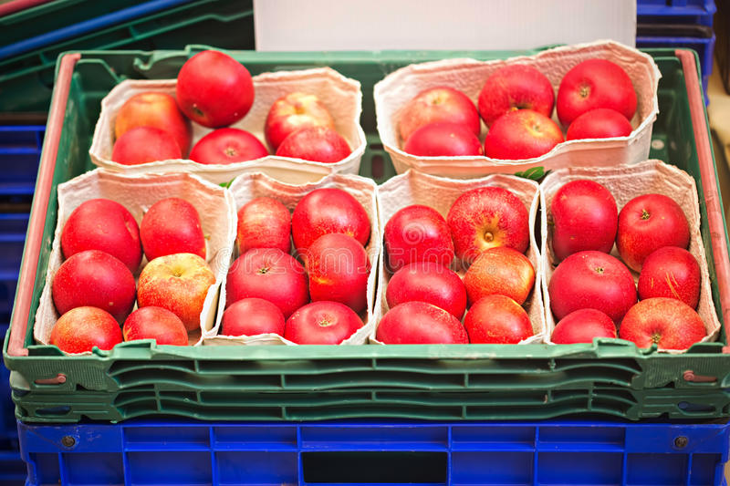 Red apples on metal tray stock image