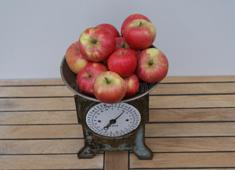 Red apples on an old-time kitchen scale seen from above. For weighing, the apples are on the old kitchen scale royalty free stock image