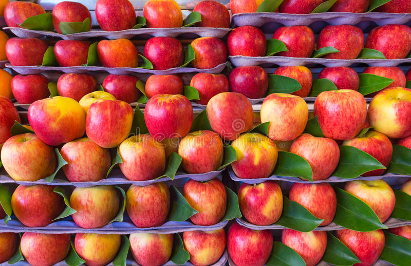 Red apples for sale at market. Yellow and red apples for sale at market stock photo