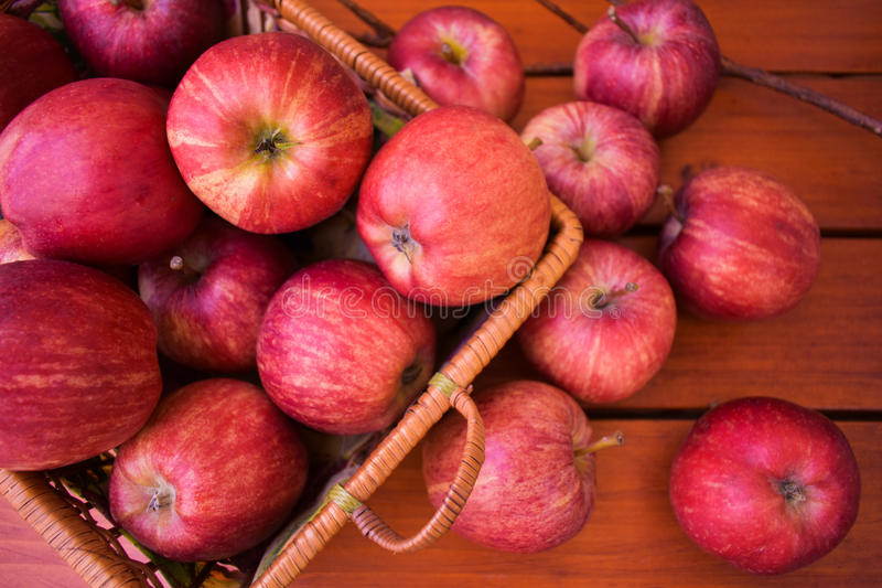 Red apples in the wicker basket, autumn harvest. stock image