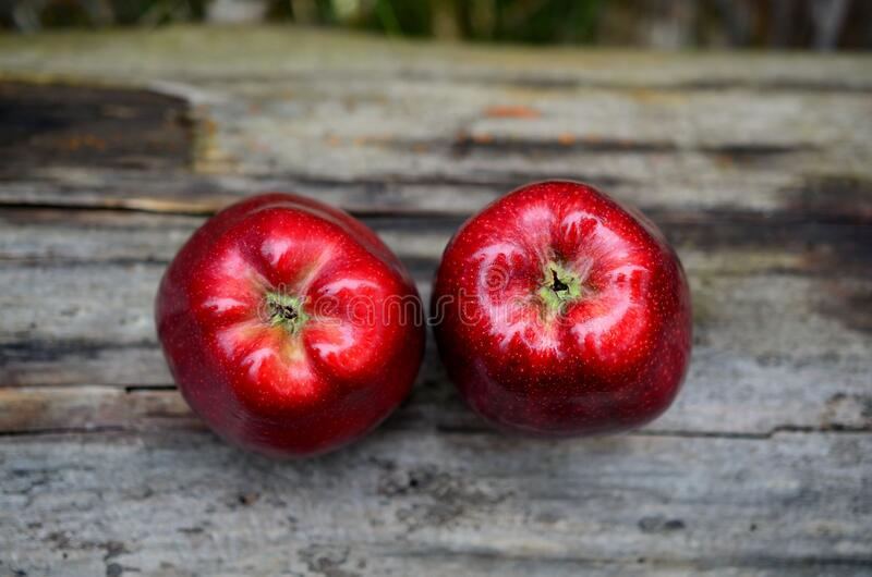 Red apples on wood plank stock image
