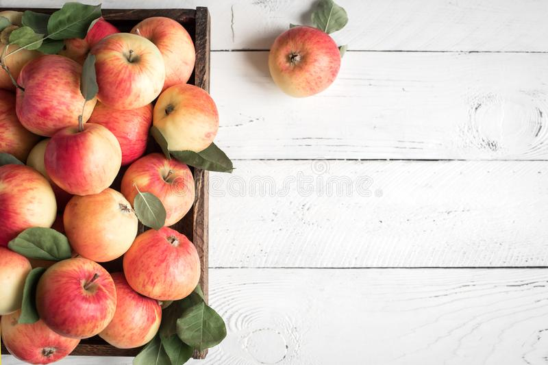 Red apples in wooden box royalty free stock photos