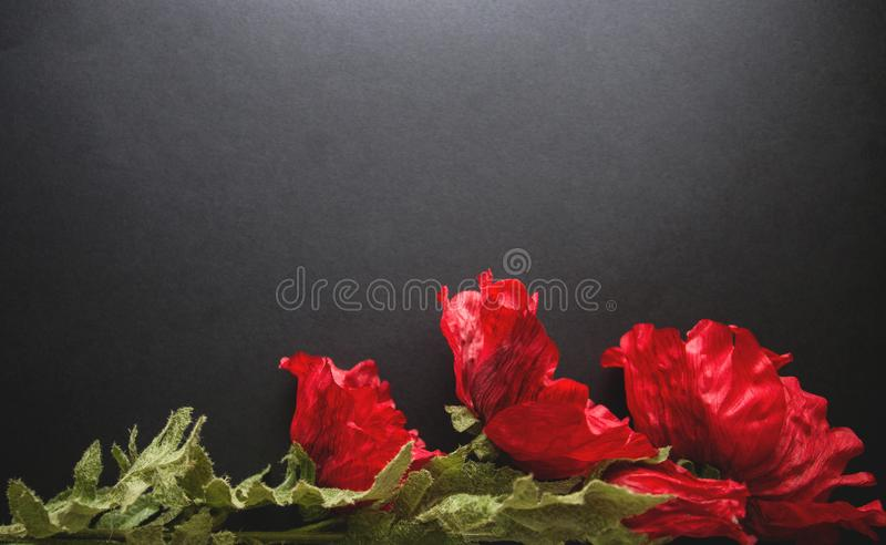 Red artificial flowers solitary on a black background, the top view. Copy space for holiday card or banner on black background royalty free stock photography