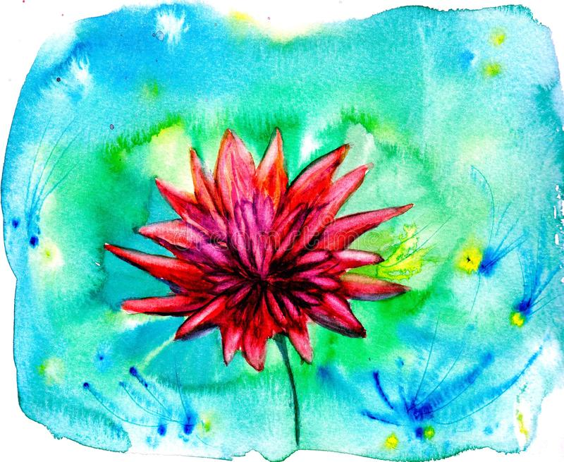 Red aster flower. Watercolor floral illustration. Vector background. royalty free illustration