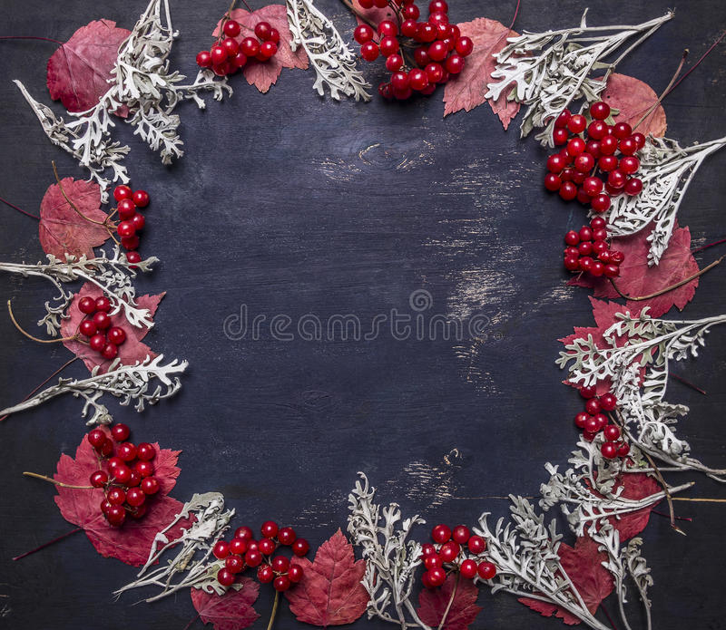 Red autumn leaves and berries Viburnum, lined frame space for text wooden rustic background top view royalty free stock photo