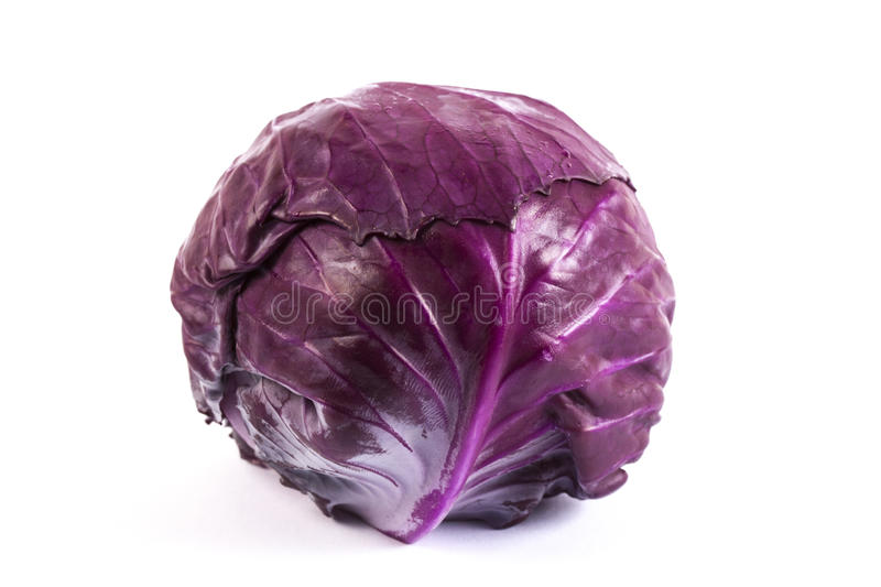 Red baby cabbage on white background royalty free stock photo