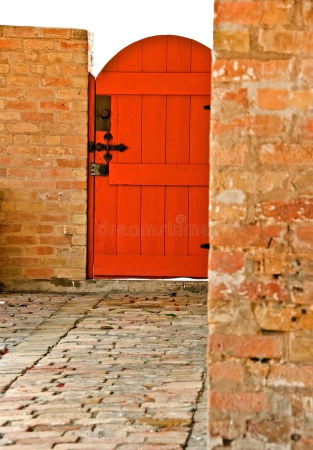 Red back door stock image