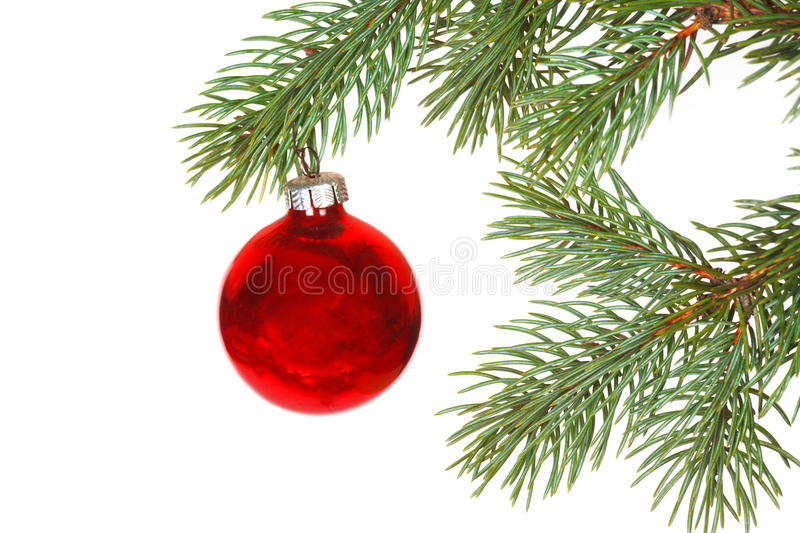 Download Red Ball On The Christmas Tree Stock Photography - Image: 36295942