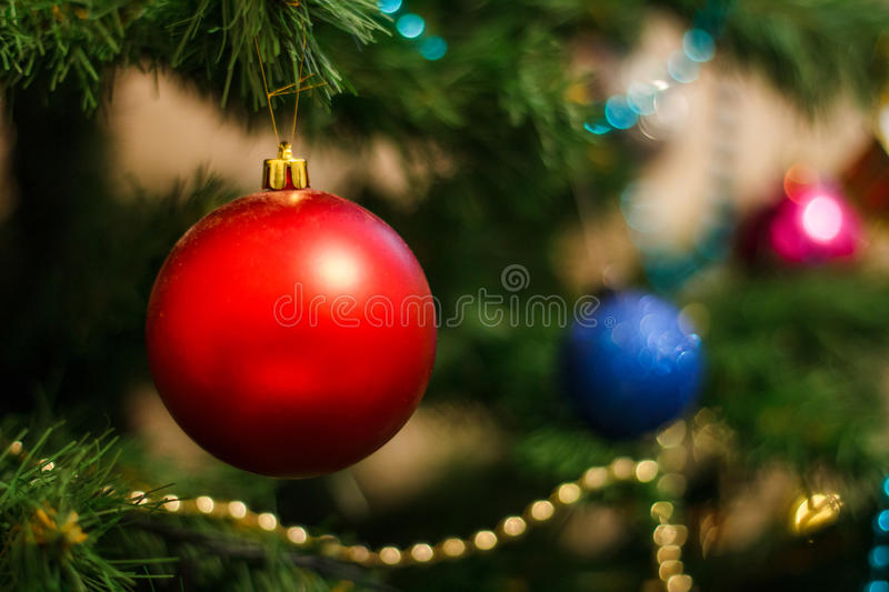 The red ball on the Christmas tree stock photography