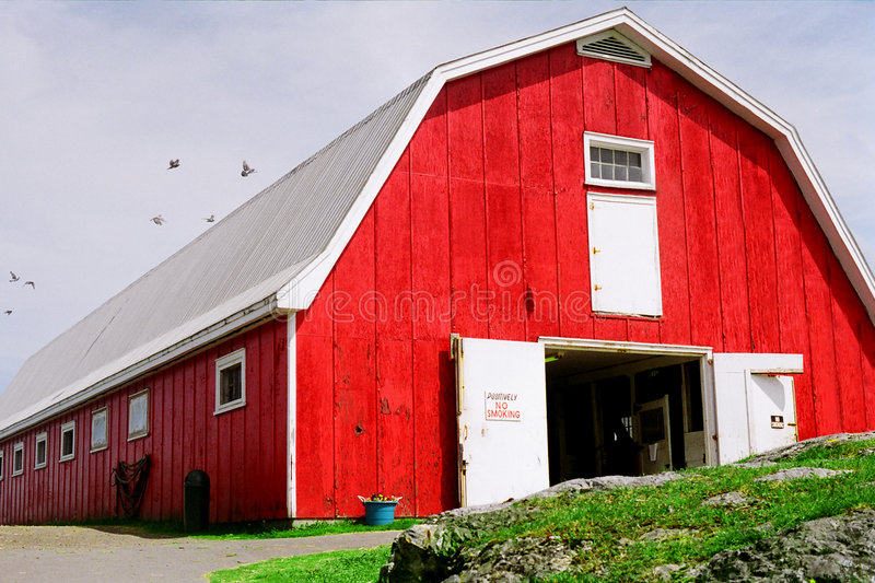 Download Red  barn stock image. Image of ranches, wooden, white - 110557