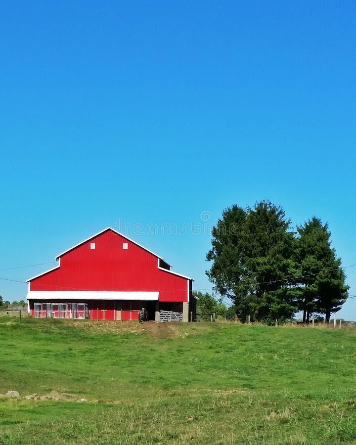 Red barn, blue sky. royalty free stock photo