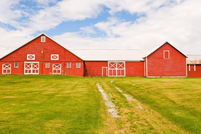 Red barn and farmyard