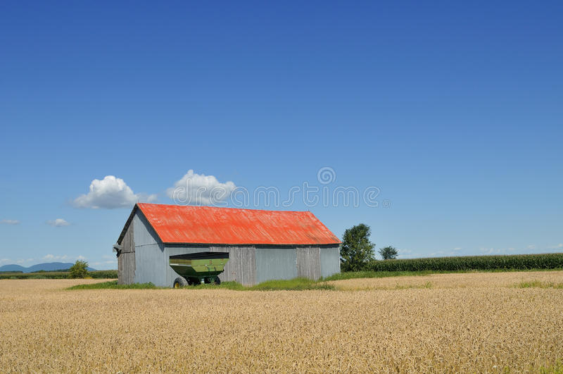 Download Red barn in the fields stock photo. Image of clouds, wheat - 10479056
