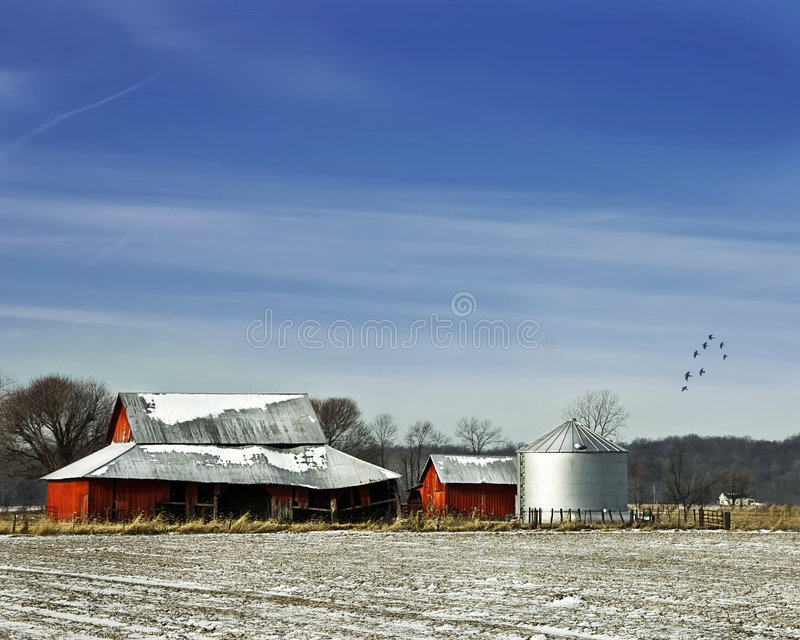 Red Barn with Sihlo and birds with blue sky stock photos