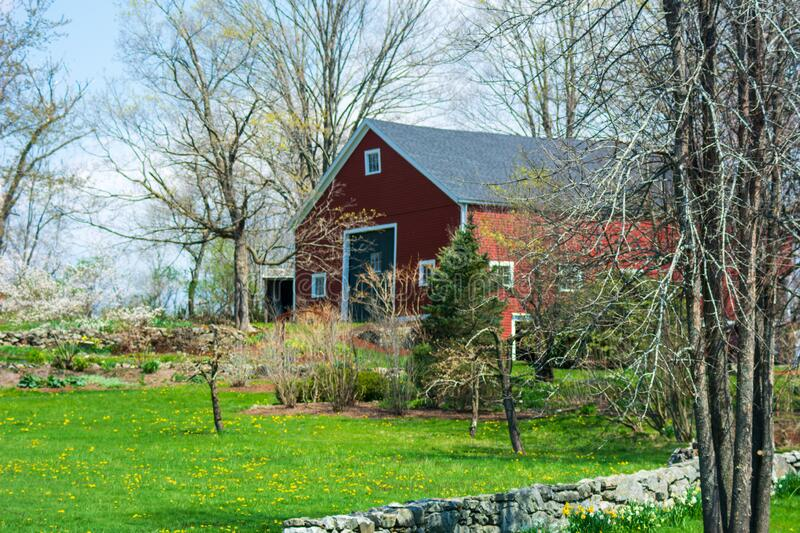 Red Barn sitting very perkily on a small green hill with blooming flowers on a early spring day under bright blue skies royalty free stock image
