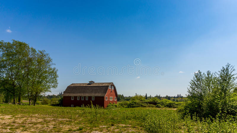 Red Barn under clear Bue Skies. Rd barn under clear blue skies in a farmers field in Langley British Columbia royalty free stock photos