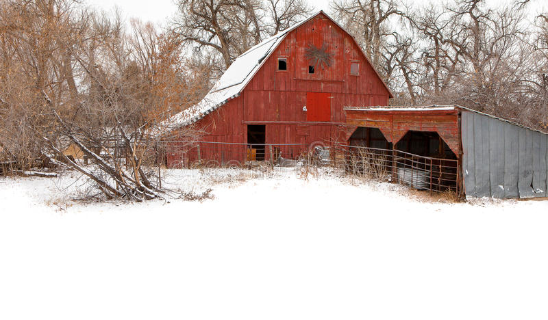 Red Barn in Winter stock photo