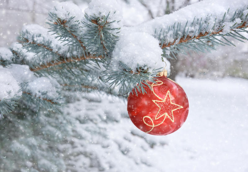 Red bauble on a Christmas tree under falling snow stock photos