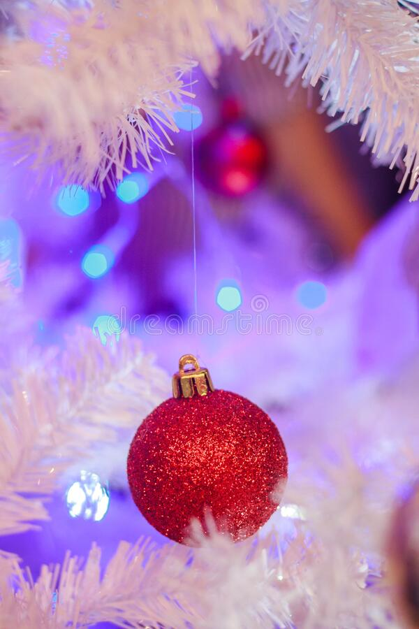 Red bauble on Christmas tree stock photos