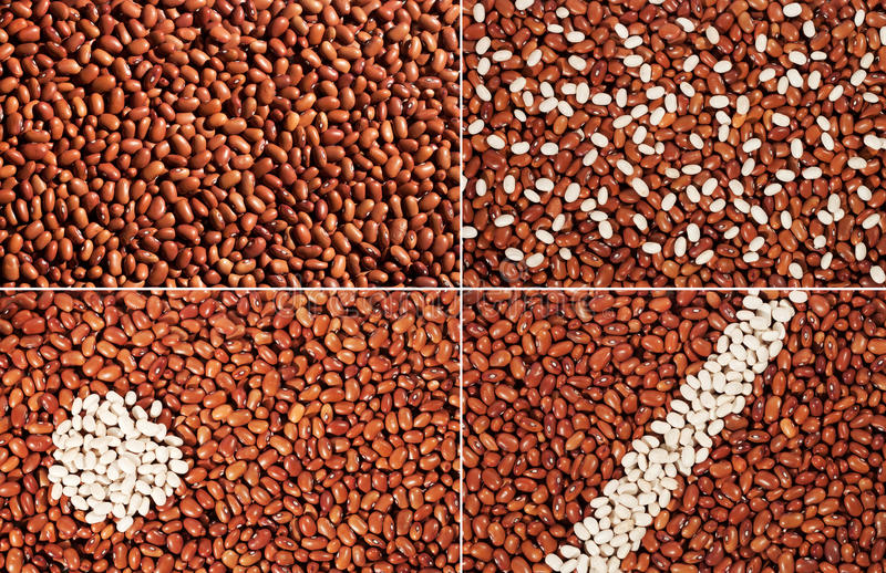 Download Red bean stock image. Image of background, white, collage - 22823587