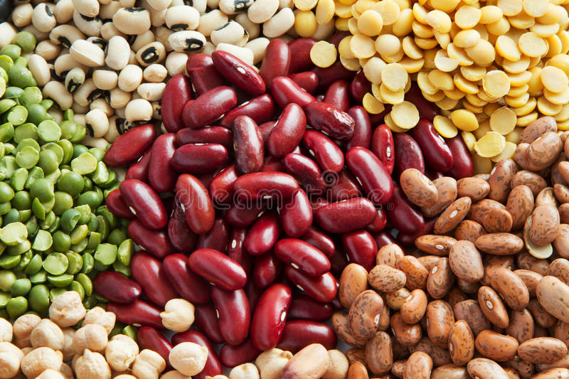 Red bean with various legumes stock images