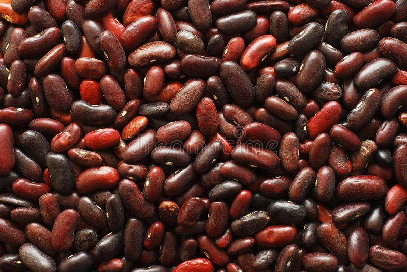 Download Red beans background stock image. Image of seeds, background - 8931661
