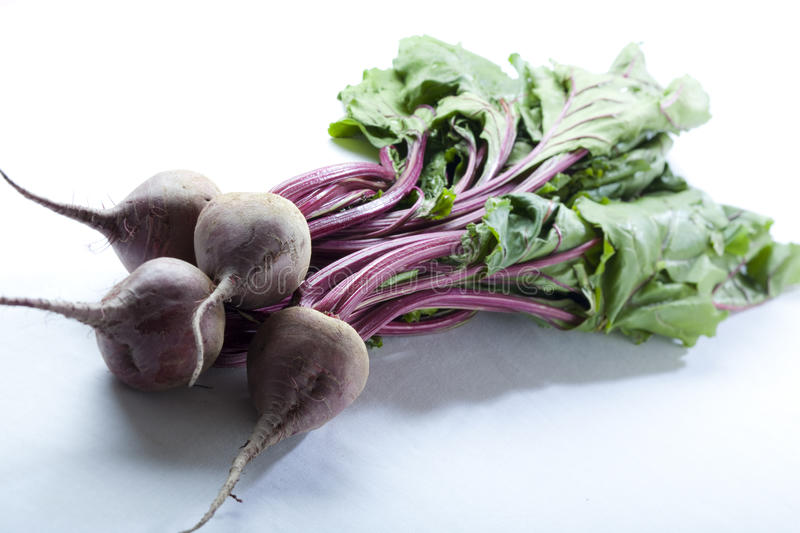 Red beet. Uncooked red beet from the market royalty free stock photo