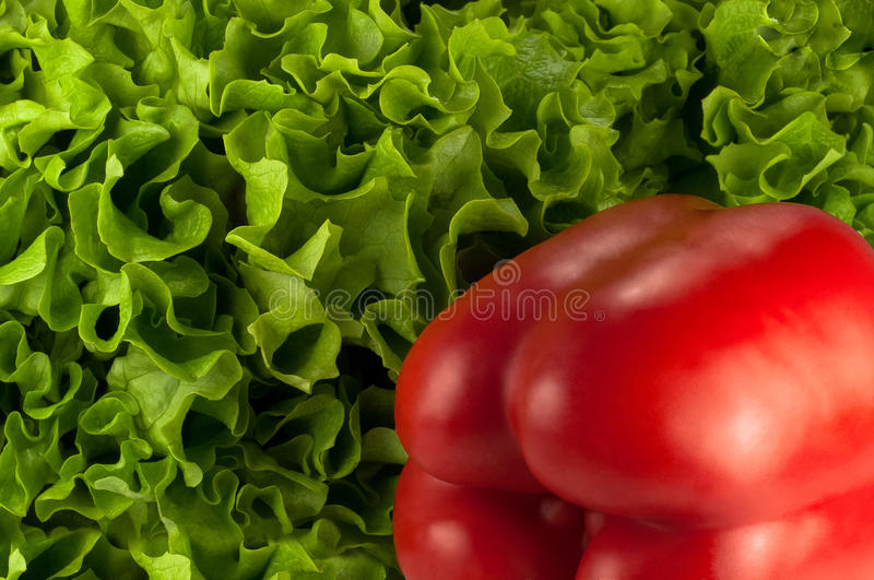 Red bell pepper on green lettuce royalty free stock photography