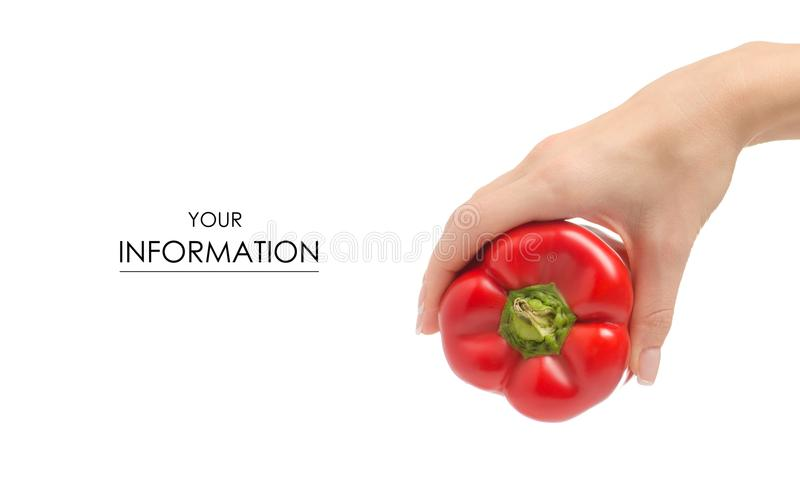Red bell pepper in hand pattern stock images