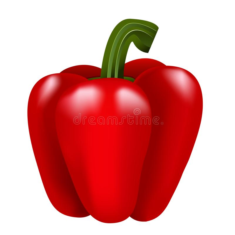 Red bell pepper on white isolated background royalty free stock image