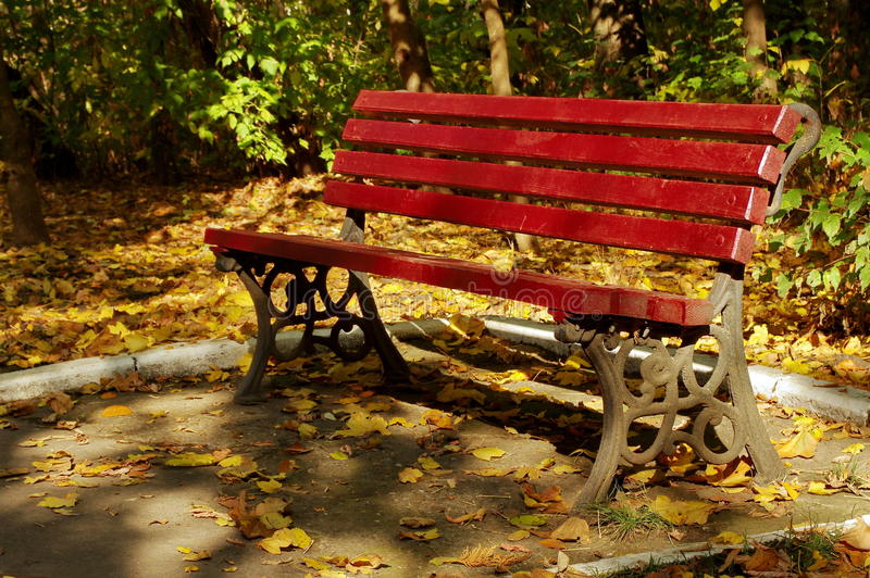 Autumn landscape. Red bench and colored leaves in a park. Tranquility. Autumn background. Autumn landscape. Red bench in a park, surrounded by carpet of colored royalty free stock image